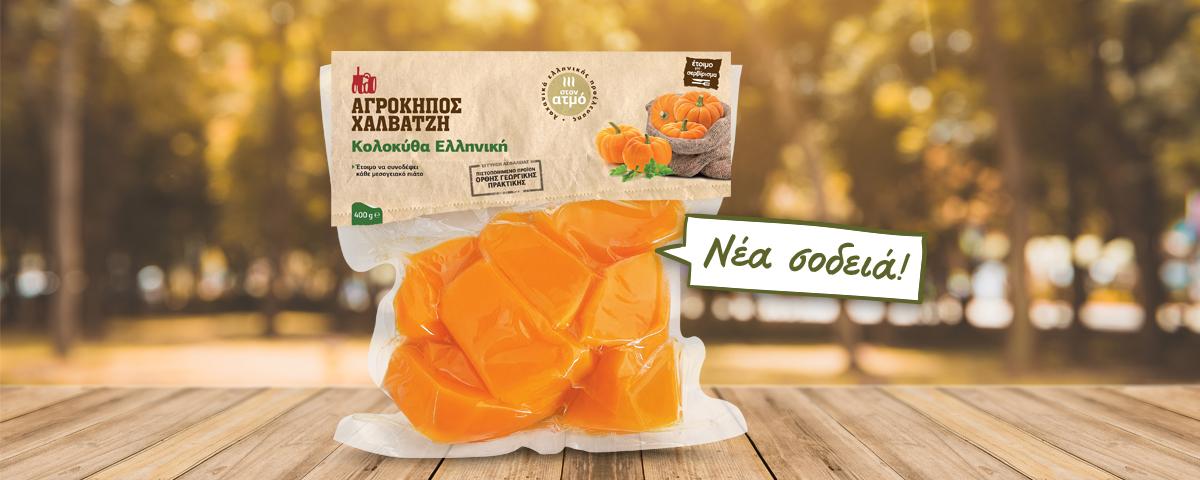 pumpkin-header